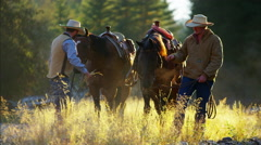 Cowboys walking horses in valley wilderness area Canada Stock Footage