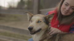 The woman is scratching the dog turning its head which has brown, colorful fur - stock footage