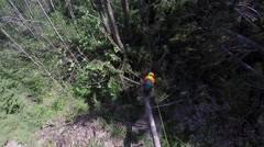 Cutting off branches with a chainsaw Stock Footage