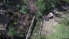 A few fallen trees are moved closer to the tractor Stock Footage