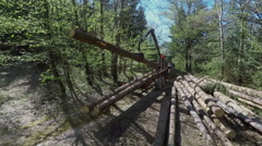 Unloading a tree trunk on a rack Stock Footage
