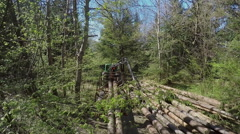 Lifting up a tree trunk Stock Footage