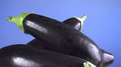 Eggplant isolated rotating on blue background - stock footage