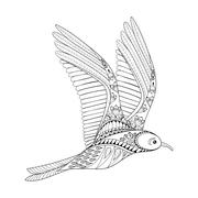 Vector Seagull. Zentangle Common Gull illustration, flying bird Stock Illustration