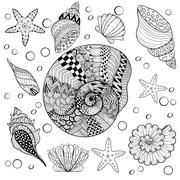 Vector set Sea Shells, zentangle shelsl for adult anti stress Co - stock illustration