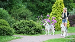 Two Husky dog pull over on leash woman on path in park Stock Footage