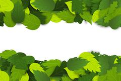 Nature background with green leaves Stock Illustration
