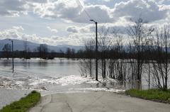 River flood, Serbia Kraljevo Zapadna Morava 2016 - stock photo