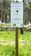"""Fitness training in forest..Sign planted in a forest that indicates """"athletic - stock photo"""