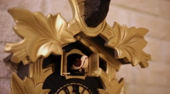 Mechanical cuckoo in clock on wall with gold leaves close up. Stock Footage