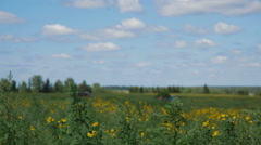 Tractor in field Russia Stock Footage
