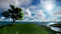 Beautiful lonely tree on solitary island surrounded by lake - stock footage