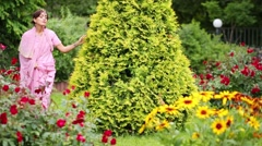 Woman in sari walking around arborvitae, touching her and hugging. Stock Footage