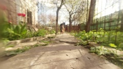 German Shepherd Passes Close Along Fences of Two Flower Beds on Background of Stock Footage