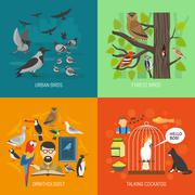 Bird 2x2 Images Concept Stock Illustration