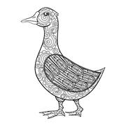 Vector zentangle magic goose, black print for adult anti stress coloring page Stock Illustration
