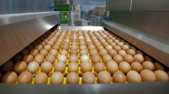 Eggs sorting in the factory Stock Footage