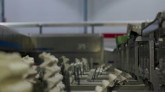 Eggs Factory Production line eggs packaging Stock Footage