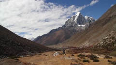 Hiker camping near mountain, Dingboche Stock Footage