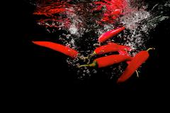 Several red peppers fallen into the water - stock photo