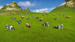 Herd of cows on alpine pasture Aerial view - stock illustration