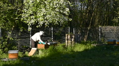 Beekeeper working with beehives outdoors Stock Footage