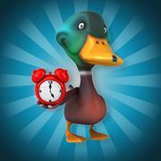 Duck - stock illustration