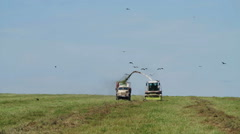 Farmer Combain harvesting in field Stock Footage
