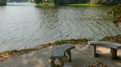 Bench at waterside of the pond in the park Stock Footage