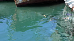 Polluted dock turquoise sea water Stock Footage