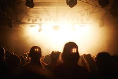 Fans at concert Stock Photos