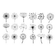 Dandelion Fluffy Seeds Flowers Set Stock Illustration