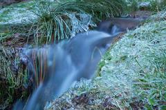 mountain river with frozen grass during winter - stock photo