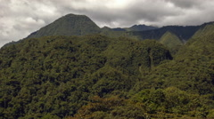 Pan along misty mountain slopes clothed in montane rainforest Stock Footage
