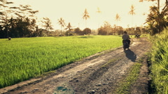 People riding motorbike through rice field in Bali, Indonesia  Stock Footage