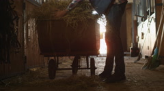 Man is preparing to feed horses with hay from a cart Stock Footage