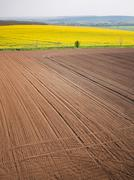Plowed field in spring-time with tractor tyre track Kuvituskuvat