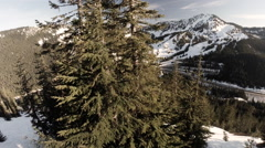 Aerial View: Reveal Of Stevens Pass Over Trees Stock Footage