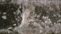 White bubbles descending and foam ascending, macro Stock Footage
