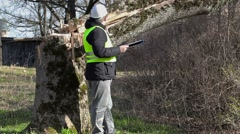 Worker with documentation checking fallen tree Stock Footage