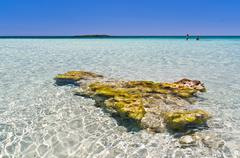 Shallow waters of Elafonissi beach, island of Crete Stock Photos