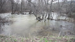 Spring flood of the river Stock Footage