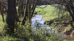 Timelapse Creek Flowing Under the Fence - stock footage