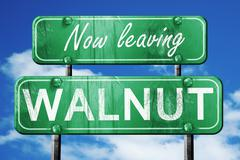 Leaving walnut, green vintage road sign with rough lettering Stock Illustration