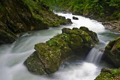 Big rock in a mountain creek at Vintgar gorge, slovenian alps, Slovenia Stock Photos