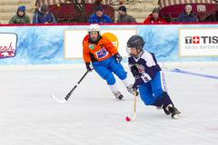 MOSCOW, RUSSIA - FEBRUARY 26, 2016: the final bandy tournament for the prizes of - stock photo