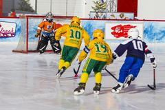 MOSCOW, RUSSIA - FEBRUARY 27, 2016: the final bandy tournament for the prizes of - stock photo