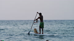 Surfer, the dog and the sea Stock Footage