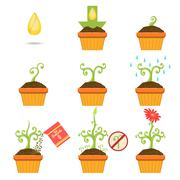 Planting The Seed Step By step Istruction - stock illustration