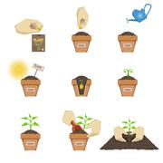 Stock Illustration of Planting The Seed Sequence